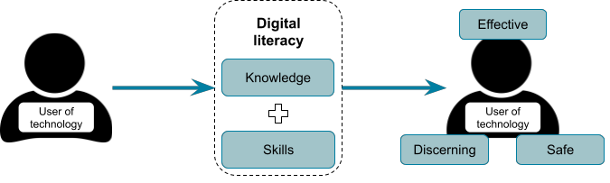 Digital literacy: the skills and knowledge required to be an effective, safe, and discerning user of a range of computer systems.